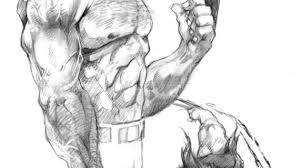 drawings of wolverine wolverine sketches dw miller conceptsmiller