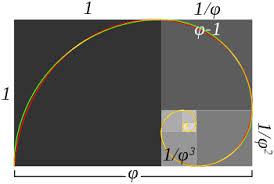 golden ratio dna spiral golden ratio wikipedia
