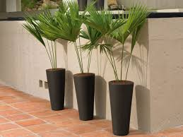 Indoor Planter Pots by 10 Modern Indoor Plant Pots That Will Dress Up A Home