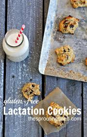 where to buy lactation cookies 144 best baby care images on