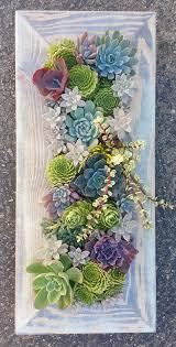 best 25 succulent wall ideas on pinterest succulent wall
