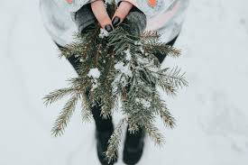 8 winter solstice traditions to start this year growing up herbal