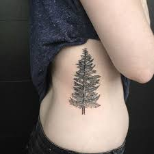22 photos of mystical pine tree tattoos feedpuzzle