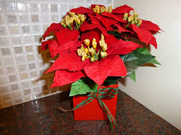 artificial plants red poinsettia christmas plant in a pot