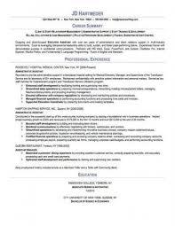 download resume professional summary haadyaooverbayresort com