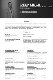 Example Marketing Resume by Vice President Of Marketing Resume Samples Visualcv Resume