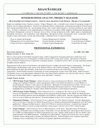 entry level business analyst resume sample business analyst