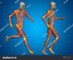 3d Human Anatomy Concept Conceptual 3d Human Man Male Stock Illustration 319460180