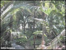unique palm garden nursing home winter haven fl backyard escapes