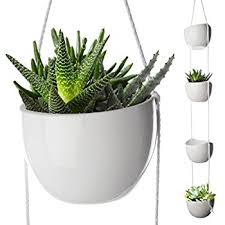 Hanging Planters Indoor by Amazon Com 2 Pack Decorative Terrariums Indoor Outdoor Glass
