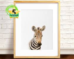 watercolor zebra print zebra art print zebra painting