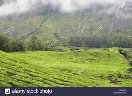 eastern and western ghats western ghats atmosphere stock photos u0026 western ghats atmosphere