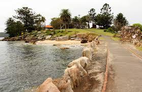 eco activities in sydney sydney shark island nsw national parks