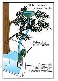 tree watering system ws02 free shipping