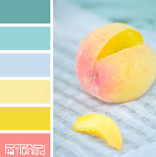 this is totally the color palette i u0027ve been using in my shoots
