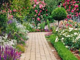 flowers for garden home outdoor decoration