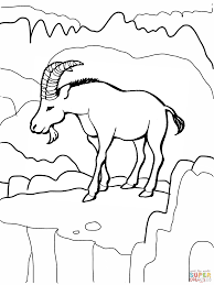 pot of gold coloring pages rainbow coloring page kids dream