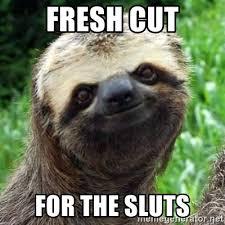 Sluts Memes - fresh cut for the sluts sarcastic sloth meme generator