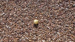 rock rock n dirt yard