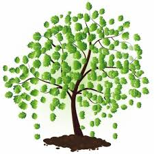 green tree vector plant free vector free