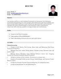 curriculum vitae for job application pdf sle curriculum vitae pdf format fishingstudio com