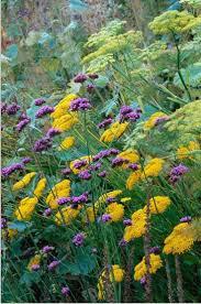549 best sunset zone 3 garden images on pinterest ornamental