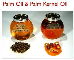 Minyak Cpo produksi olein dan stearin dari kelapa sawit bagian 1 catatan