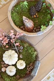 Esszimmer Herbstlich Dekorieren Wie Ihr Eine Schale Kreativ Mit Naturmaterialien Dekoriert
