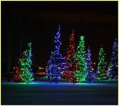 Christmas Rope Light Tree by Rope Lights On Christmas Tree Home Design Ideas