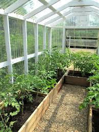 home greenhouse plans green house ideas