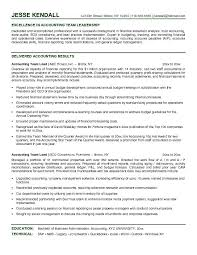Sample Resume For Accountant by Example Accounting Team Lead Resume Free Sample