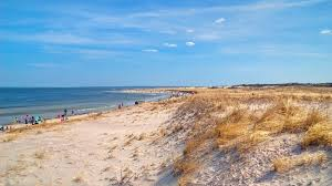 Massachusetts beaches images The best beaches in massachusetts according to foursquare jpeg