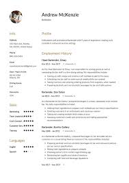 bartender resume exles 12 free bartender resume sles different designs