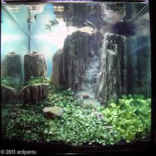 Aquascape Designs For Aquariums 764 Best Aquascaping Images On Pinterest Aquascaping Aquarium