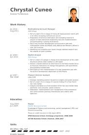 Sample Resume For Account Executive by National Account Manager Resume Samples Visualcv Resume Samples