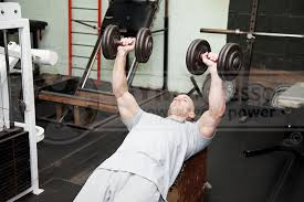 Incline Dumbell Bench Press Incline Bench Press