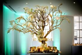 manzanita branches wholesale manz6 jpg