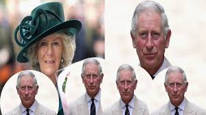 camilla slept with prince charles to take revenge from cheating