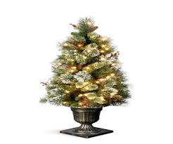 decorative christmas tree stands real trees best images