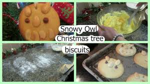 how to make snowy owl christmas tree biscuits youtube