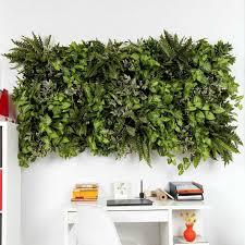 jackie vertical garden indoor plants u2013 garden beet