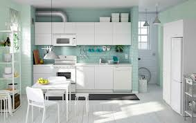 ikea kitchen cabinet colours the color of ikea s kitchens decorating by donna