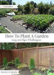 how to plant a garden the easy care way