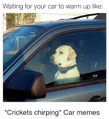 Crickets Chirping Meme - 25 best memes about crickets chirp crickets chirp memes