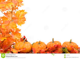 fall pumpkin wallpaper autumn leaves and pumpkins wallpaper pocket press