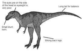 albertosaurus facts kids