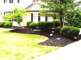 cheap landscaping ideas for backyard inexpensive front yard green