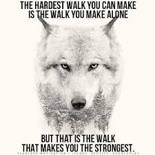 Lone Wolf Meme - 20 strong wolf quotes to pump you up wolves wolfpack quotes
