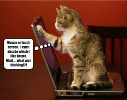 Thinking Cat Meme - lolcats like page 3 lol at funny cat memes funny cat