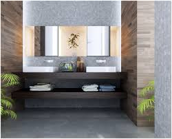 bathroom contemporary spa bathroom design ideas contemporary